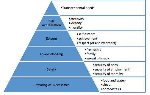 Maslow's Heirarchy of Needs and Wants